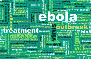first case of Ebola greg bustin executive leadership blog