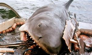 shark from jaws, greg bustin executive leadership blog